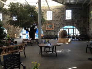 Golan Heights / Capernaum Vista Olive Oil Factory. Israel tourism.