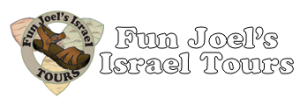 Fun Joel Israel Tours